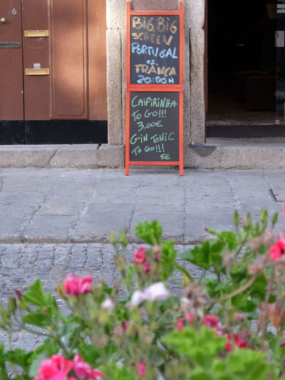 Euro 2016 Flowers Green & Red No People Outdoors Porto Portugal Publicity Streetphotography_fujifilm