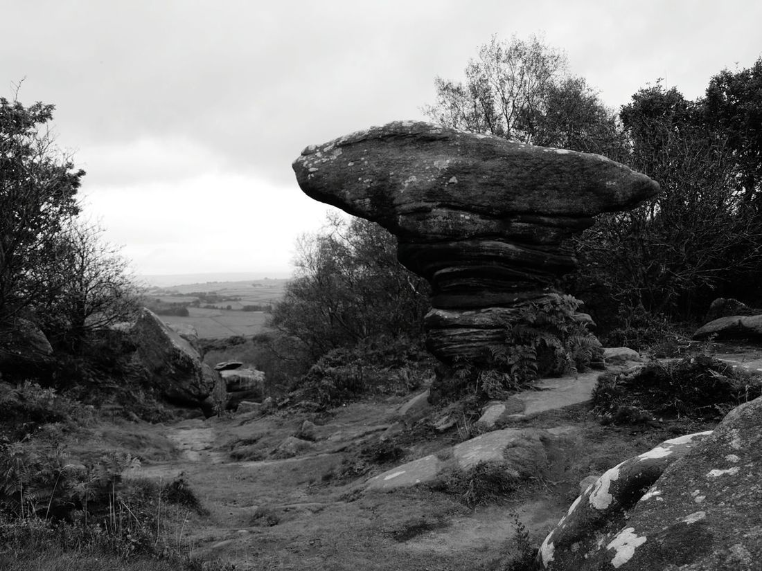 Rock Formation Landscape Tree Beauty In Nature Outdoors Famous Place Rocks Grey Tree Woods Forest Grey Sky Anvil Autumn Brimham Rocks Yorkshire