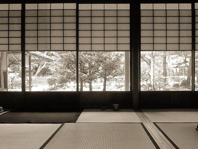 茶道のお稽古のお部屋。 京都 Kyoto 茶道 Teaceremony お稽古 Lesson 煎茶道 Sencha 和室 日本家屋 Japanesestyleroom 障子 Sliding Door 畳 Tatami