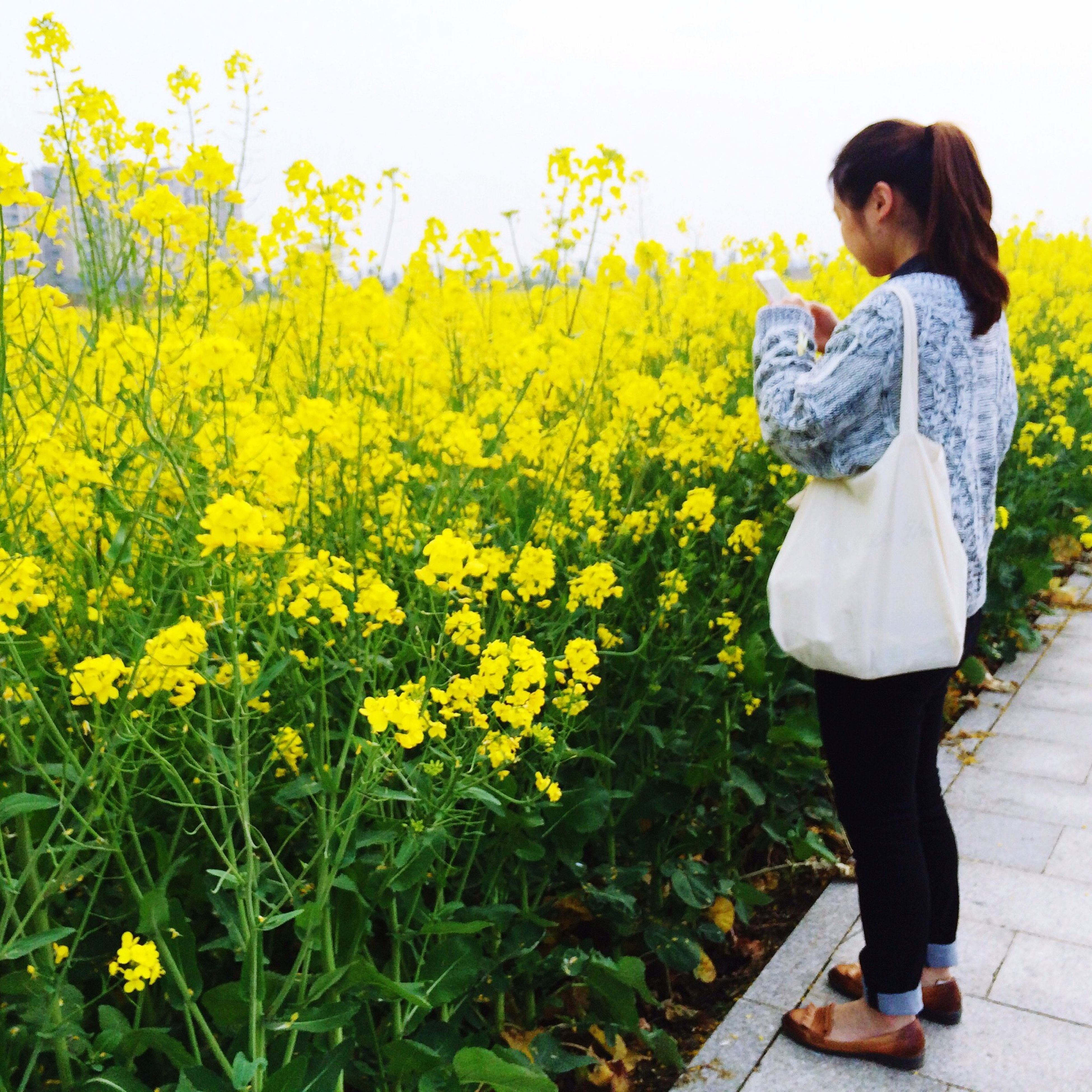 casual clothing, lifestyles, standing, leisure activity, person, flower, full length, elementary age, yellow, young adult, childhood, three quarter length, girls, plant, growth, nature, holding, young women