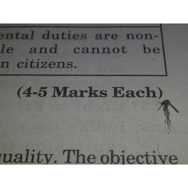 4 to 5 marks each. :P :P ShitIDoWhenIStudy Dead Mosquito Exams FML
