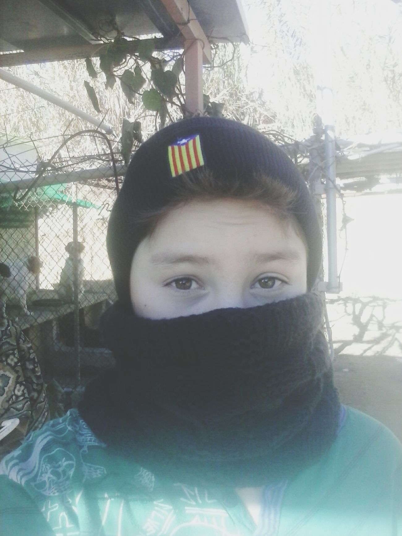 Cold Catalonia Is Not Spain Independence