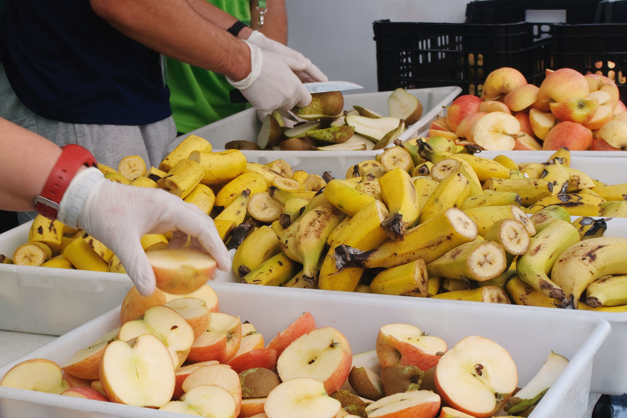 Abundance Apple Banana Choice Food Food And Drink Freshness Fruit Hands At Work Healthy Eating Healthy Lifestyle Pear Vegetable Working Hands Yellow