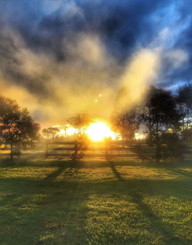 Golden time... Sunset Sunlight Tranquil Scene Beauty In Nature Sun Landscape Sunbeam Environment Nature Lens Flare Sky Sunset #sun #clouds #skylovers #sky #nature #beautifulinnature #naturalbeauty #photography #landscape EyeEmbestshots Outdoors Australia Australian Landscape Evening Light