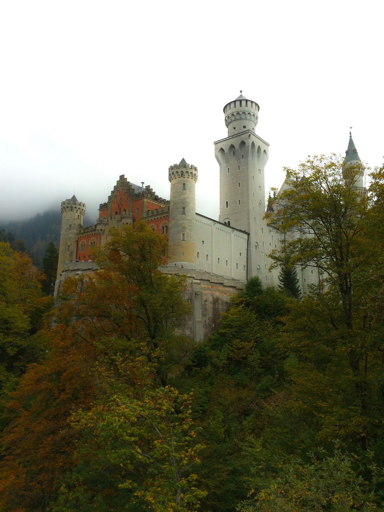 Schloss Neuschwanstein (I know not the most creative photo, but I kind of like it) Tree Building Exterior Architecture Built Structure Outdoors Sky Nature Day No People Low Angle View History Castle Forest Füssen, Bayern, Deutschland Schloss Neuschwanstein Neighborhood Map