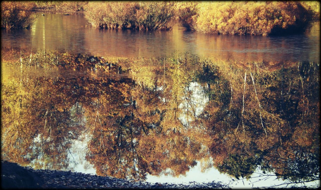 Beauty In Nature Lake Mirroring In Water Autumn Outdoors No People
