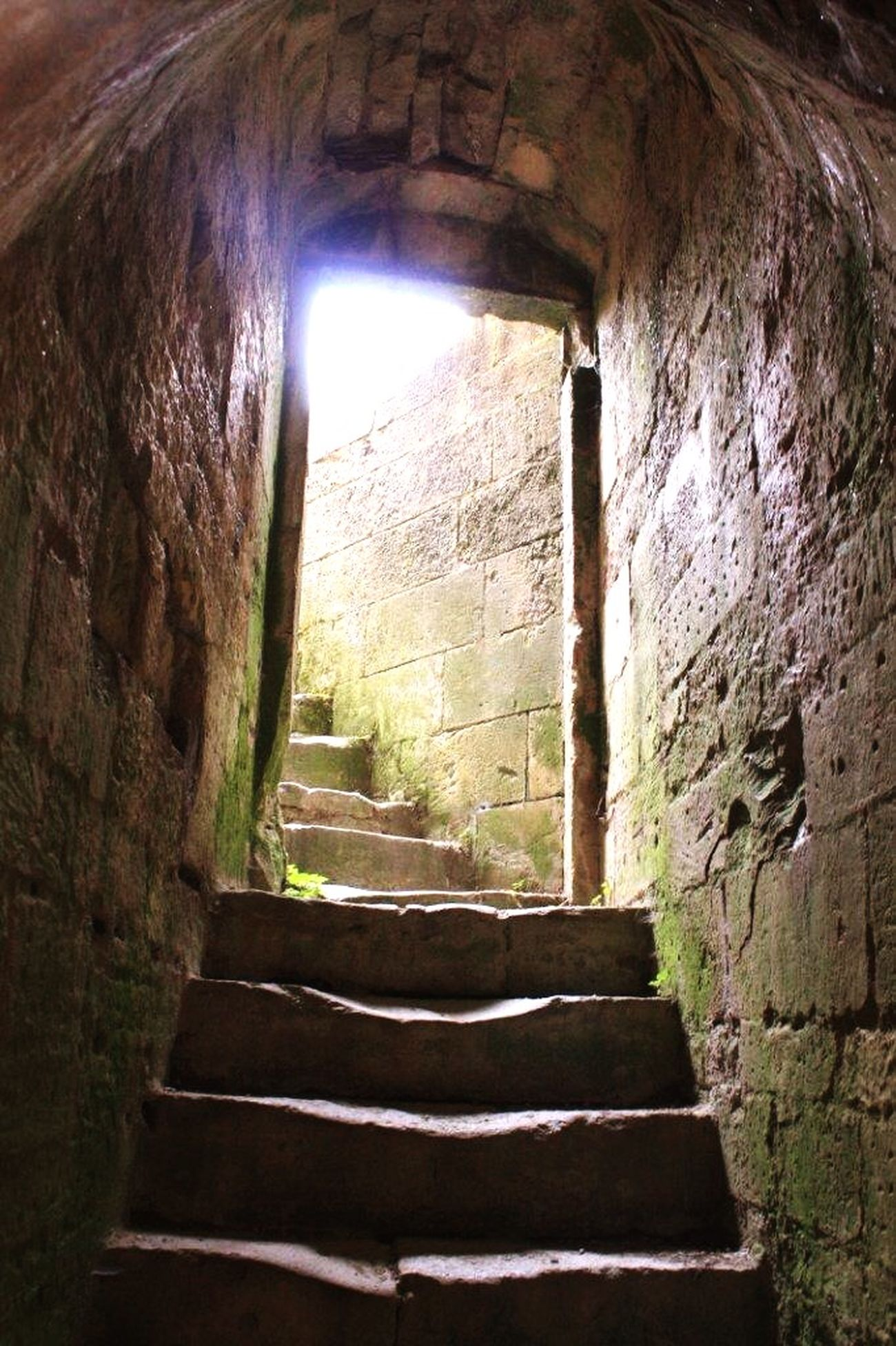 Château Oleron Doorway Lights Castle