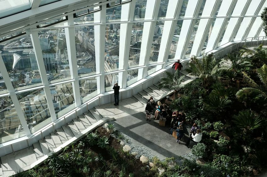The sky garden, interior Interior London Garden Day Roof Top Building And Sky Architecture Fujifilm X100T The Tourist The Changing City RePicture Growth How Do We Build The World? Human Meets Technology Telling Stories Differently London Lifestyle The Architect - 2016 EyeEm Awards The Street Photographer - 2016 EyeEm Awards Postcode Postcards