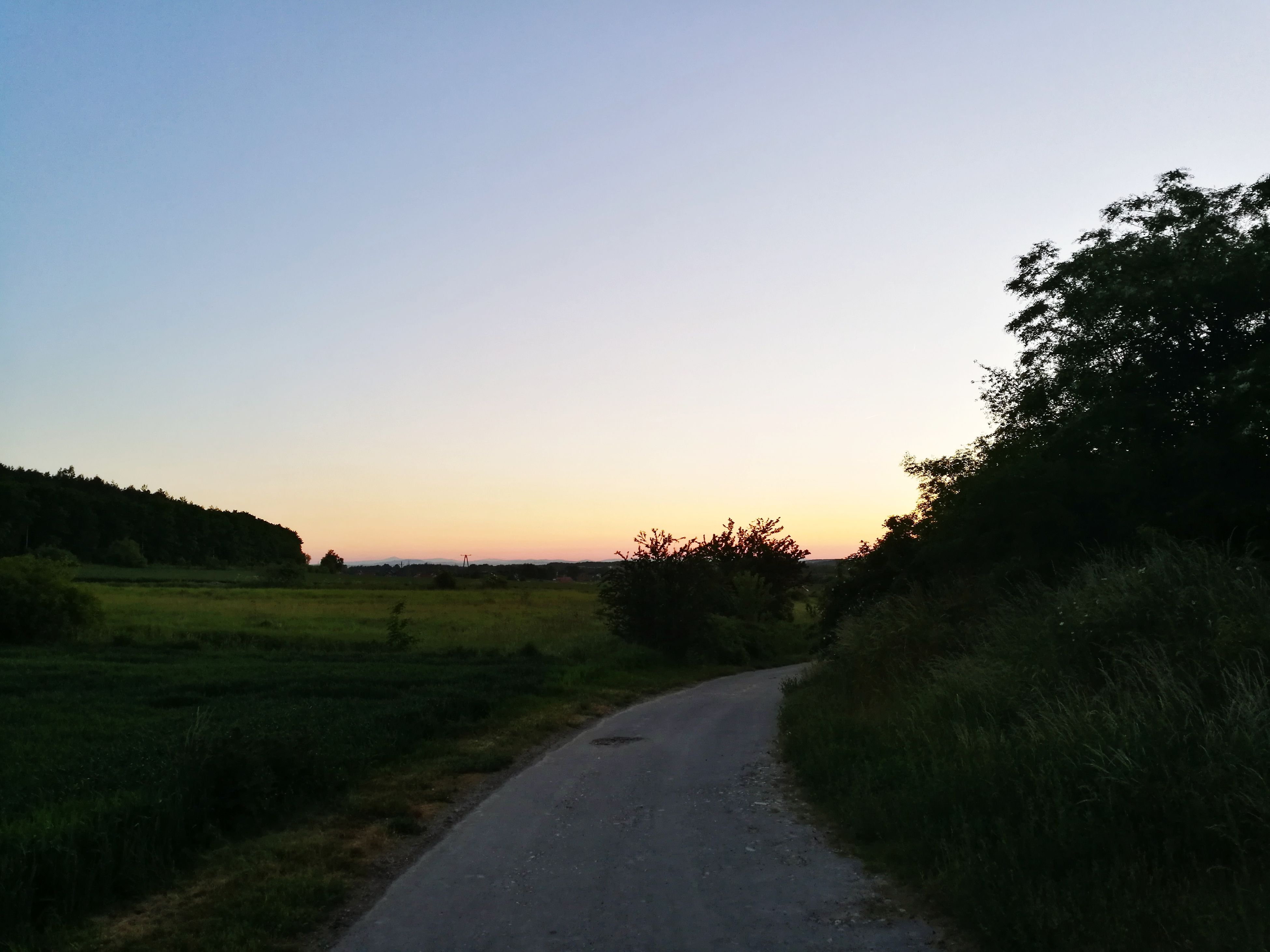 sunset, the way forward, tree, nature, road, clear sky, no people, tranquil scene, scenics, landscape, tranquility, field, beauty in nature, silhouette, sky, outdoors, grass, growth, plant, rural scene, day