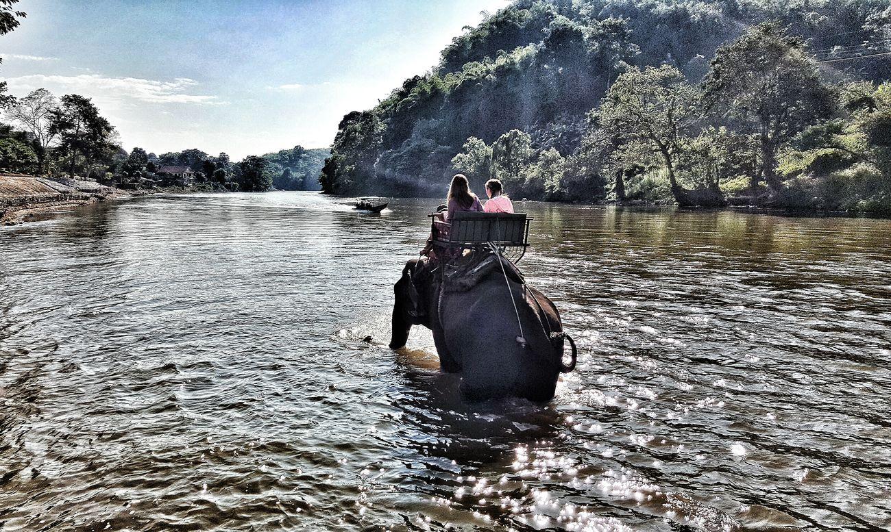 First Eyeem Photo Eyeemphotography Chiangrai,Thailand Elepant Elephantlove Elephant Trekking Eye4photography  At @chiangrai