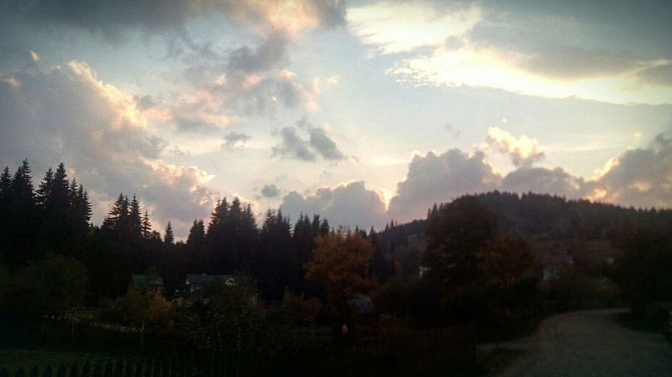 Beauty In Nature Sky Mountain Nature Mountain Range Tree Tranquil Scene Scenics Tranquility Cloud - Sky Non-urban Scene Cloud Idyllic No People Majestic WoodLand Outdoors Evening Evening Sky Karpathian Ukraine