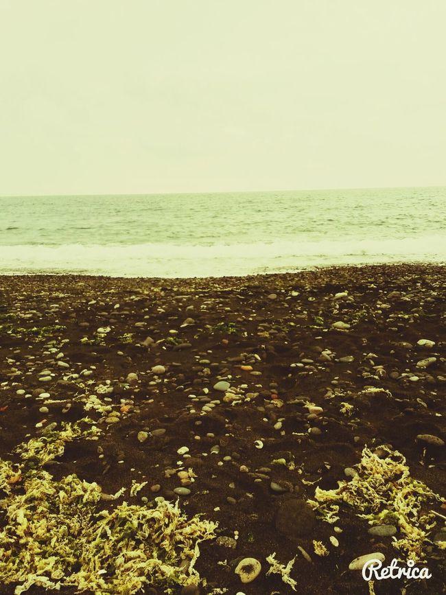 Sea Travelling Sea Landscape
