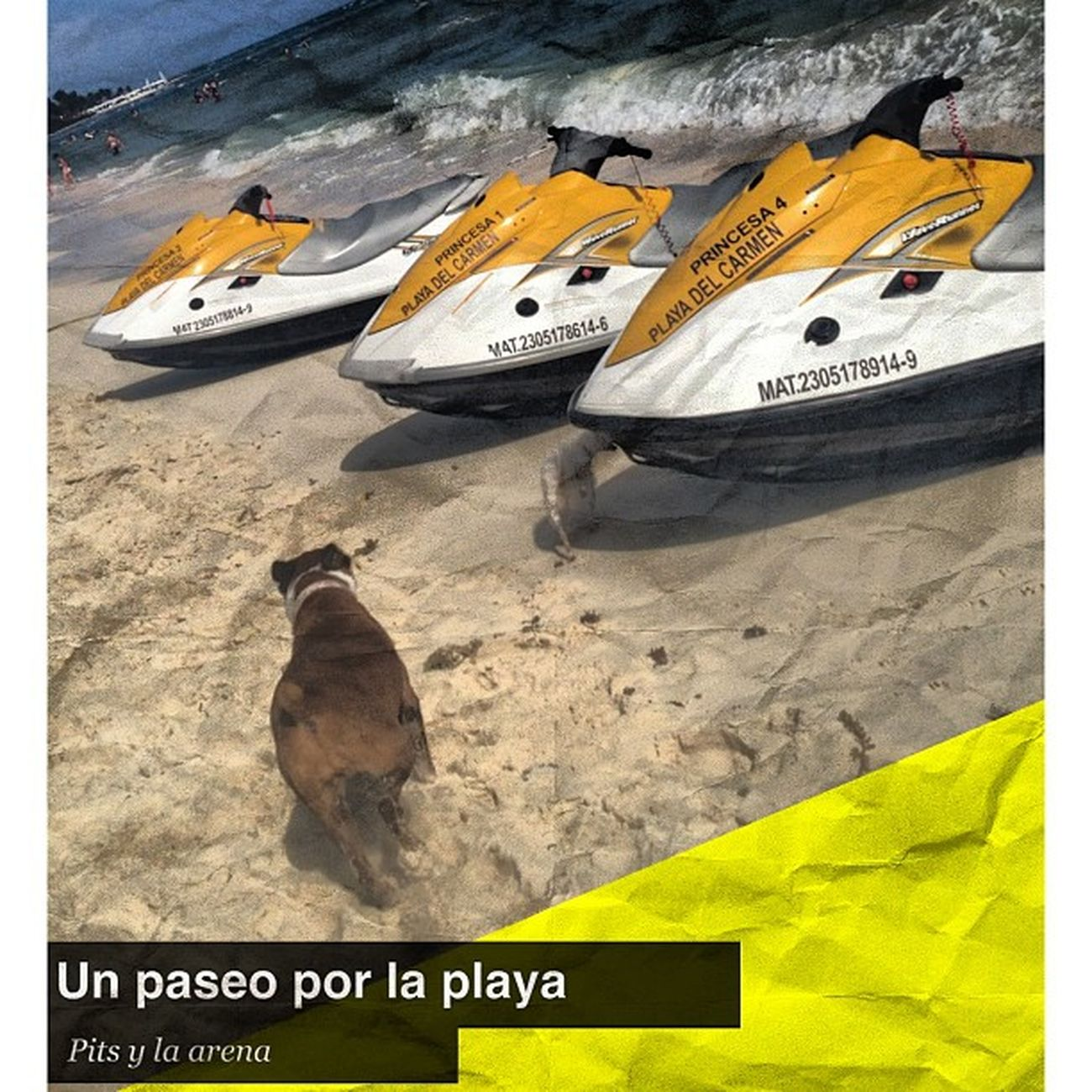 Pita #playa #squaready #quintanaroo #cancun #playadelcarmen #traveler #travel #jetsky #sun #sunset Sun Sunset Travel Playa Iphonesia Picoftheday Cancun Traveler Squaready Playadelcarmen Jetsky Quintanaroo
