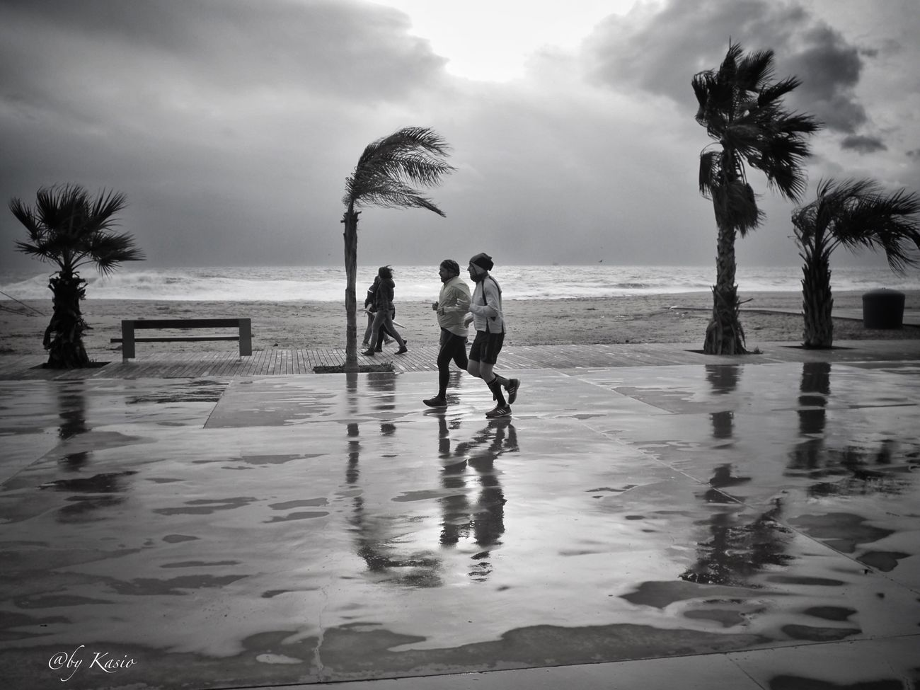 Contra viento y marea... Real People Sea Full Length Palm Tree Sky Beach Water Leisure Activity Scenics Cloud - Sky Eye4photography  Capture The Moment Olympus Olympus Om-d E-m10 EyeEm Best Shots City Life City BW Collection Bw Photography Streetphotography Street Photography