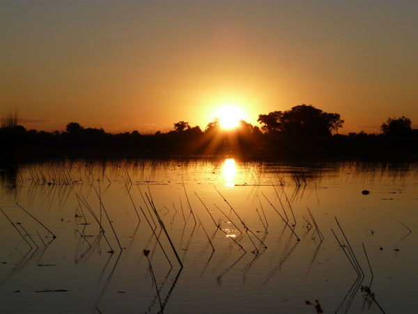 Okavango Sunset Beauty In Nature Floating On Water Outdoors Nature Landscape Sunset Tranquility Wilderness Botswana BotswanaSundowner Botswana Beauty Scenics No People Jao Pelo Camp Okavango Delta Travel Destinations Travel EyeEmNewHere Backgrounds Purist No Edit No Filter