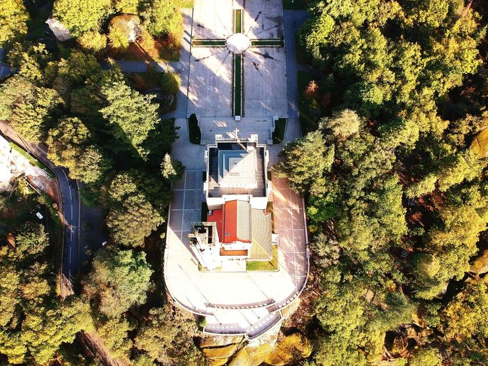 Architecture High Angle View Outdoors Building Exterior Tree Nature Guimarães Church Skyview Landscape Portugal Relogion Catolic Sky