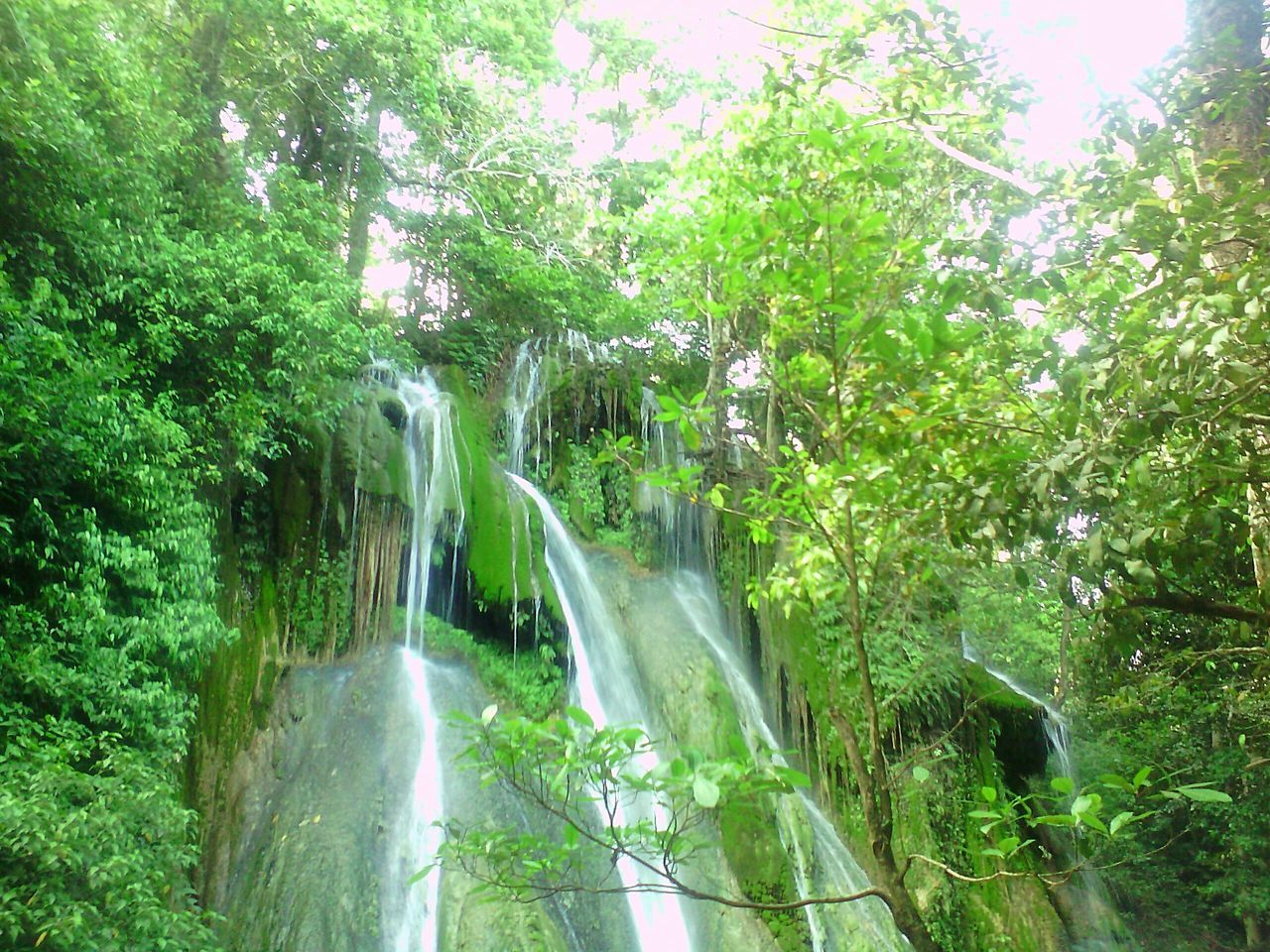 Water Nature Beauty In Nature Green Color Tree Scenics No People Growth Forest Waterfall Outdoors Day Freshness GreenNature Green Green Green!  Nature Photography Nature_collection Beauty Of Nature Outdoorphotograph NoPeopleAround Water Slides Rocks In Water Waterfalls Waterandrocks Motion