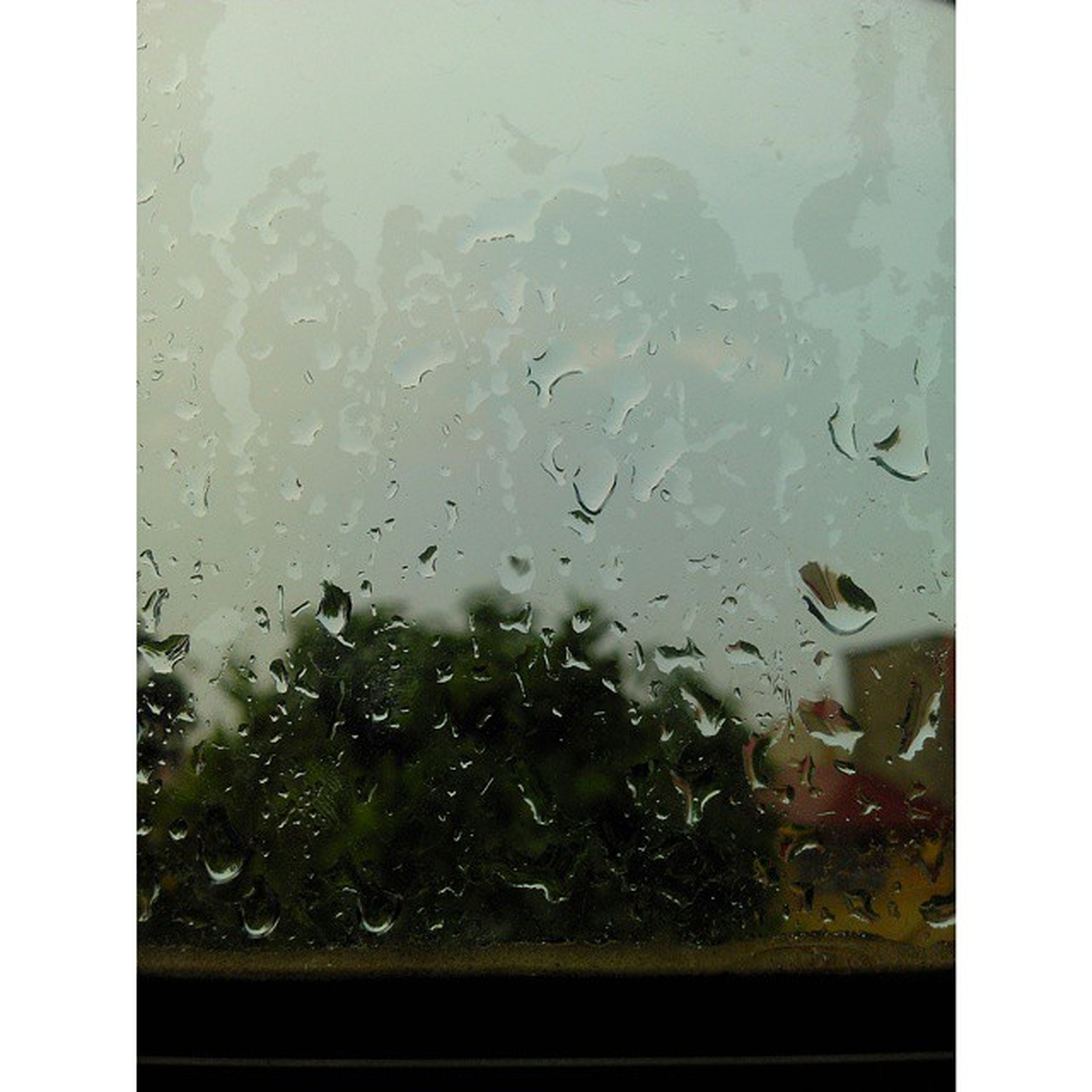 drop, window, transparent, glass - material, wet, indoors, water, rain, glass, raindrop, season, weather, looking through window, vehicle interior, car, close-up, full frame, backgrounds, water drop, sky