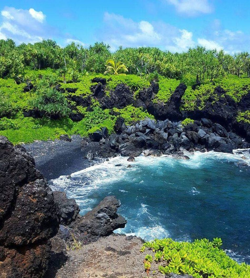 Water Nature Outdoors Beauty In Nature Green Color No People Scenics Women Around The World Oceanside Ocean Photography Mauiphotography Maui Hawaii Maui Hawaii Travel Sunshine Sunshine ☀ Sun Summertime ♥ Photographer Photography Nikonphotography Nikonphotographer Nikon Leaf