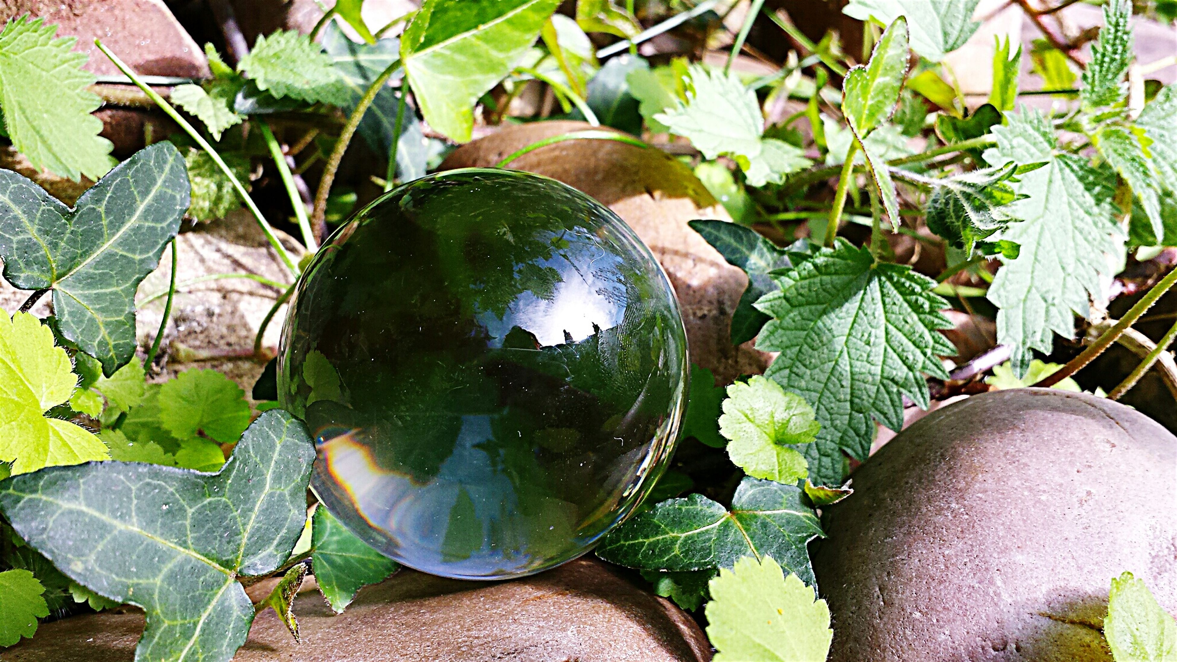 Nature Scrying Witchcraft  Crystal Ball