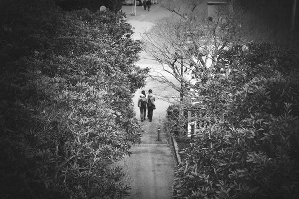 Love in Mito-shi by Takashi_k