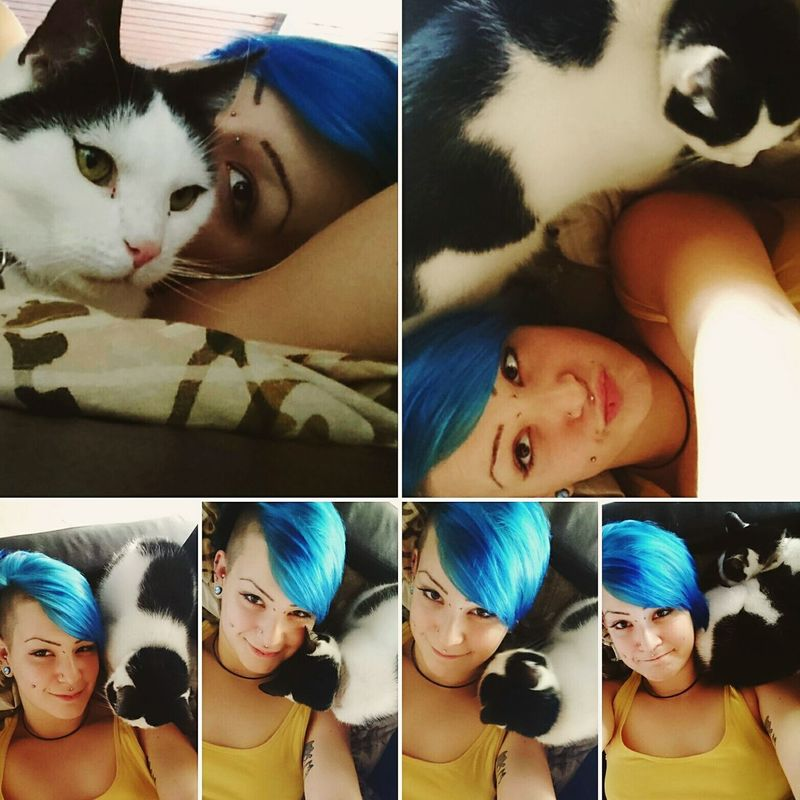 Bedtime Storys Animal Pets Beauty Catoftheday PiERCiNGS & TATTOOS Pierced Cats 🐱 Hatschi Kuddle Young Women BlueHair BlackandwhiteCatlovers Cats Of EyeEm Bedtime Bedtime Story  Catlove♥ Story Dream Lovestory Young Adult Women Animal Themes Portrait Piercing