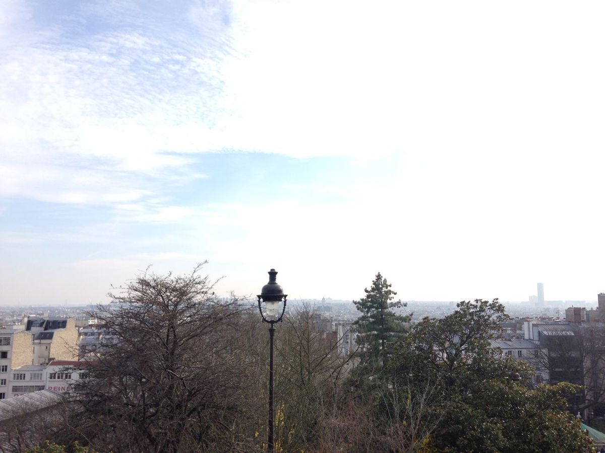 Spring, enfin Animal Themes Architecture Bare Tree Bird Building Exterior City Day France Lamp Montmartre Nature One Animal One Person Outdoors Parsi Perching Sky Skyline Tree Urban Vintage