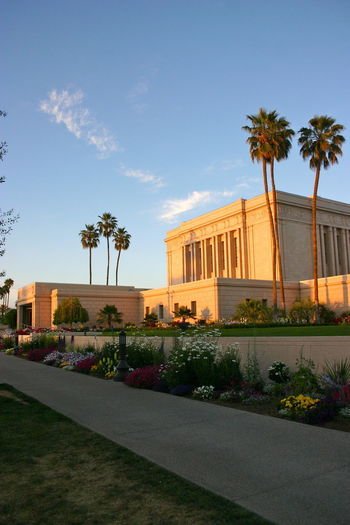 Architecture Blue Built Structure City Cloud Cloud - Sky Coconut Palm Tree Day Green Color Growth Lds Lds Temples Mesa Mesa Arizona Multi Colored Nature No People Outdoors Palm Tree Plant Sky Temple Tree
