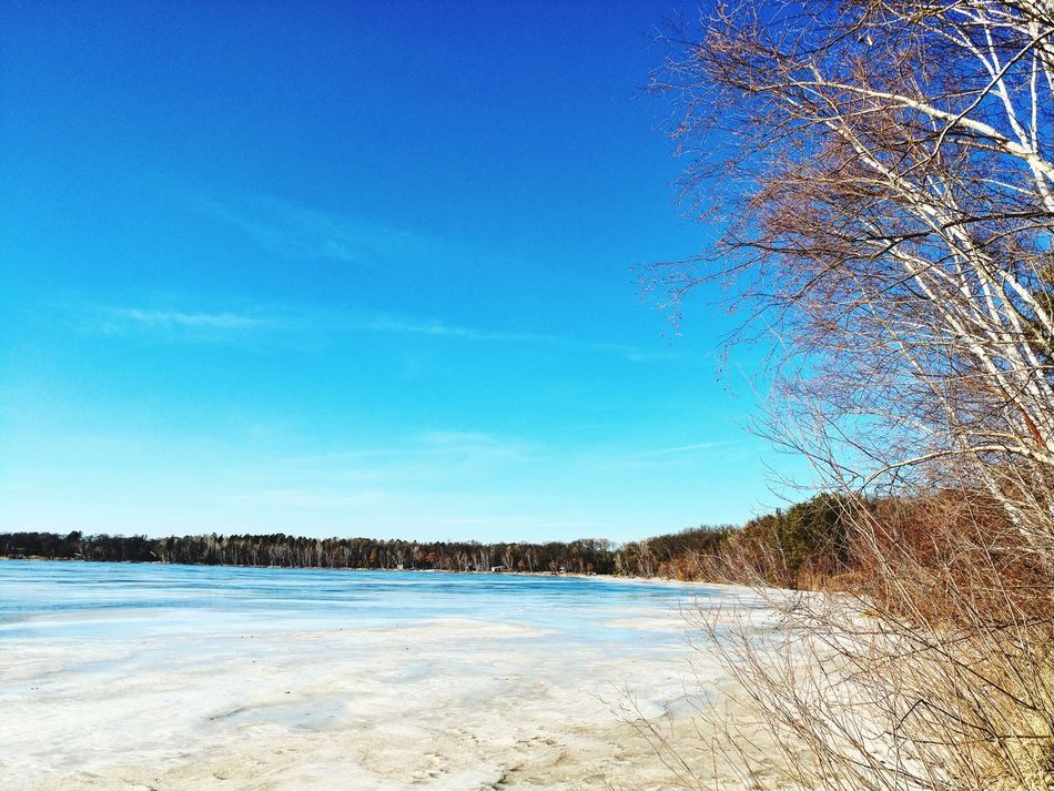 Taken last month on one of our local lakes here in MN...so good to say goodbye to the ice and cold for a while! Warmerdays Spring Ice Frozen Lake Blue Sky Day Outdoors Nature Scenics Landscape No People Cold Temperature Beauty In Nature Cloud - Sky Tree Blueskies Life Is Beautiful Water Lake Lakeshorelife Ice Out Clear Sky