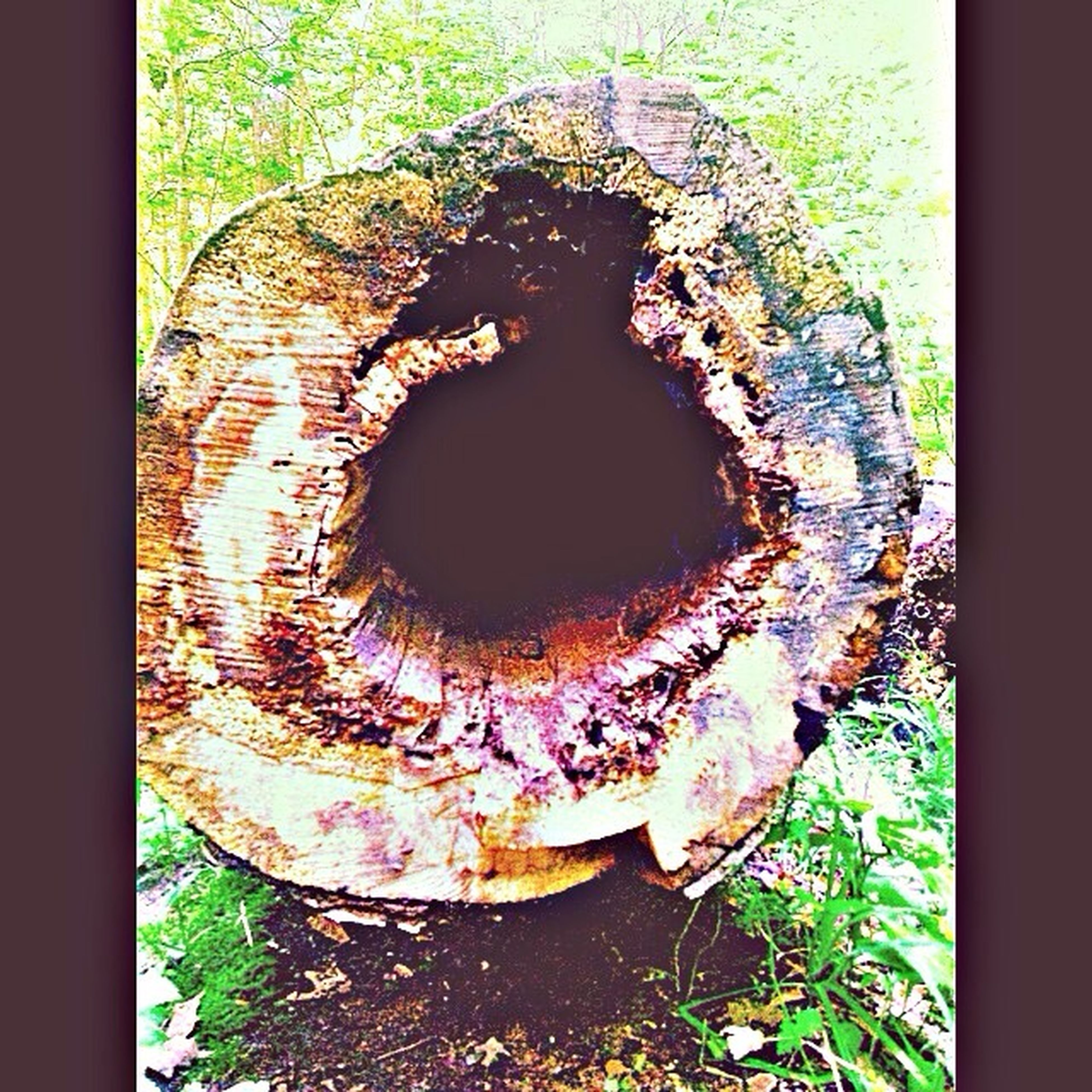 indoors, close-up, old, transfer print, circle, auto post production filter, abandoned, hole, built structure, wall - building feature, weathered, damaged, day, door, no people, window, art, wood - material, deterioration, house