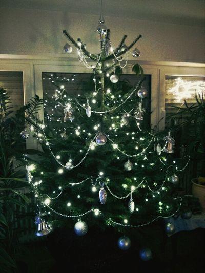 Ein Baum Weihnachten Weihnachtsbaum