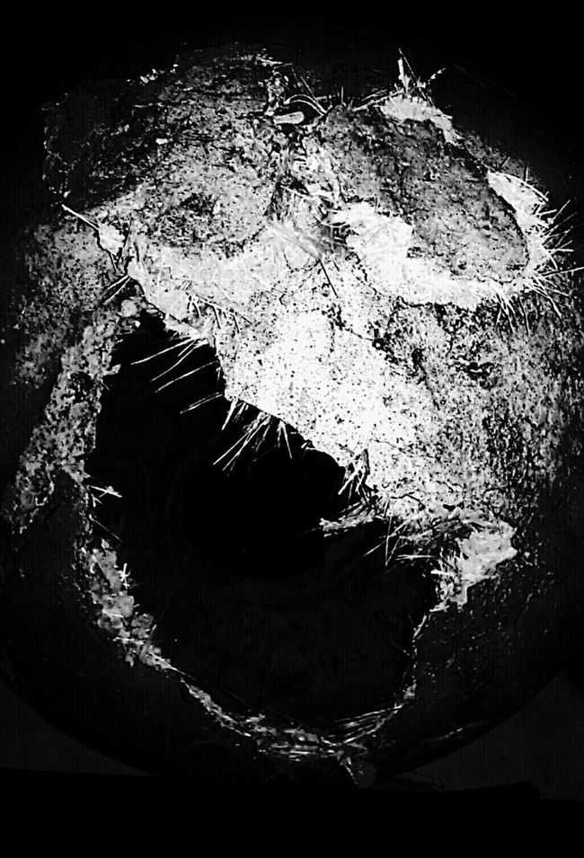 ⊙°Ş¡ ę \ ł $℃®€@m°⊙ Check This Out Blanco Y Negro Blackandwhite Photography Black And White Darkness And Light Light And Shadow Noir Et Blanc Darkness Macro Beauty Darkart Horror Scream Hello World Silence Bnw