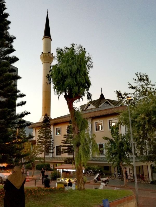 Tree Architecture Travel Destinations Day No People Statue Outdoors Sky Building Exterior Grass Alanya/Turkey Arts Culture And Entertainment Turkey Night Lights Mosque Turkey Mosque Photography Place Of Worships Alanya Türkiye