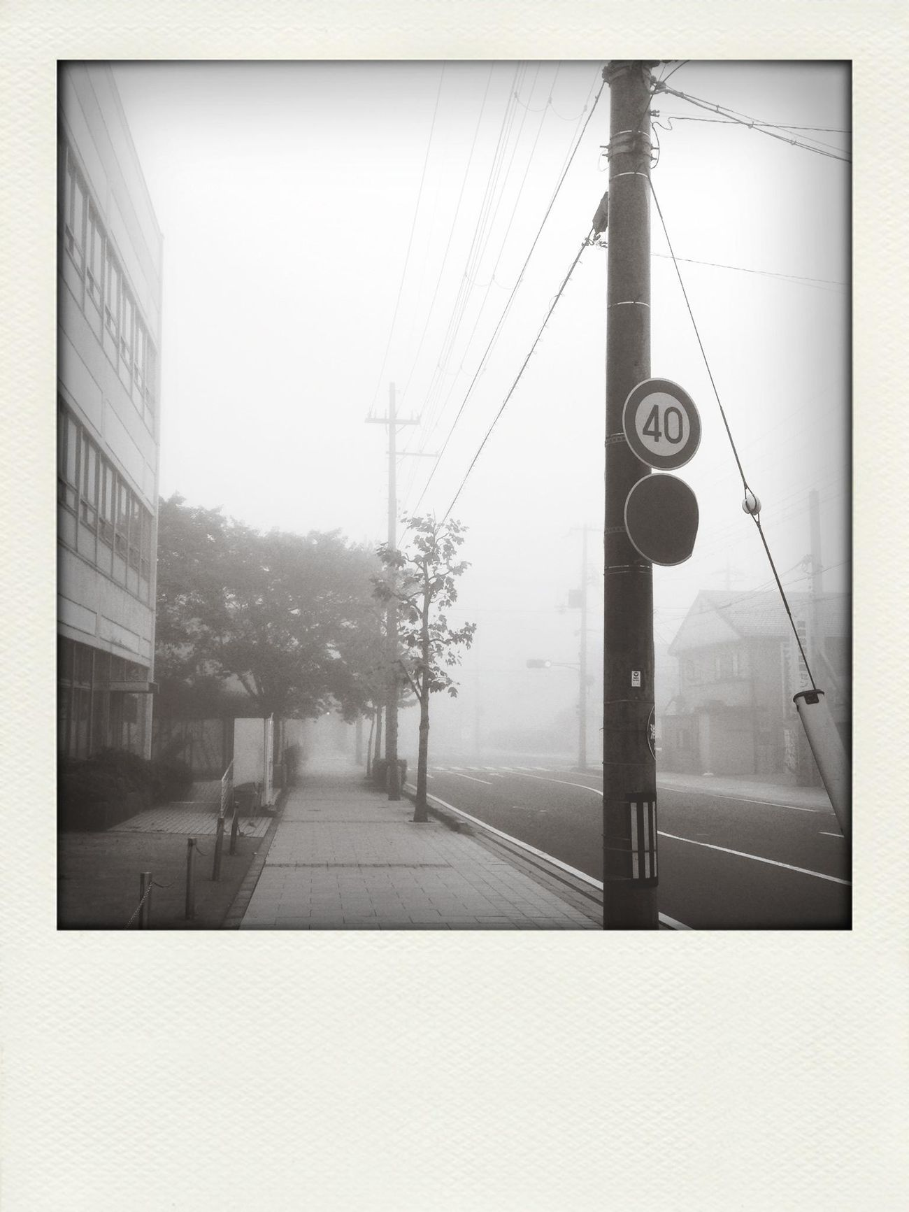 Foggy morning