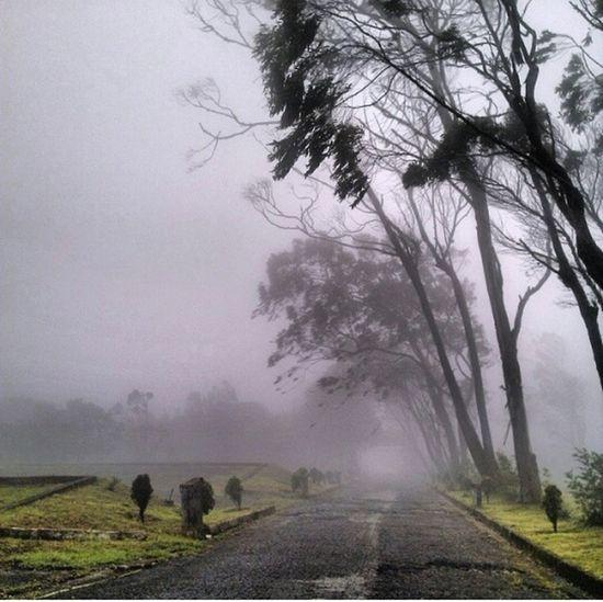 Nature On Your Doorstep VENEZUELA <3 Fotografia Audiovisuales
