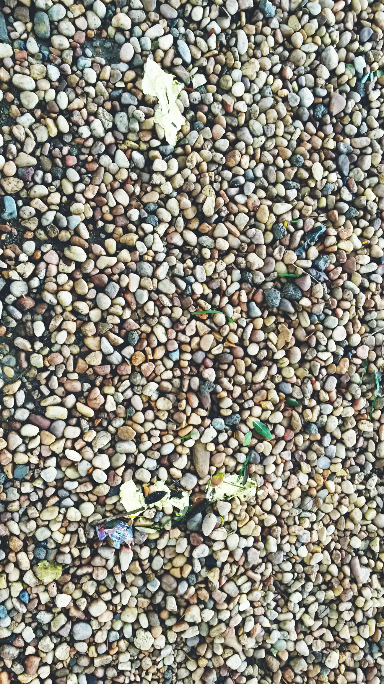 IPhone Click Large Group Of Objects Nature Abundance No People Outdoors Close-up Picoftheday EyeEm EyeEm Best Shots Remoamalanphotography Remo Amalan Photography Bestoftheday Stones Pebble Worthit Allignment Cool Peace Ground Photooftheday Bye Bye