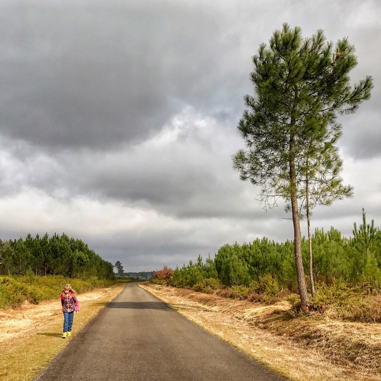 Little Ride in the Landes Region 😀 South West of France Photooftheday Landscape Road Tree Beauty In Nature Nature Iphoneonly Travel Destinations Outofthephone Iphonephotography EyeEm IPhoneography Moment Sky The Way Forward Snapseed Tranquility Gourbera Scenics Outdoors