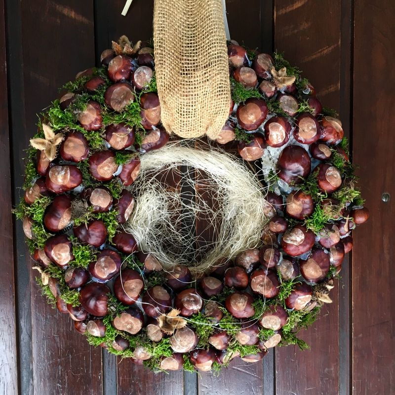Fall Beauty Chestnut Buckeyes Annulus Garland Door Getting Creative Welcome IPhoneography Iphonephotography
