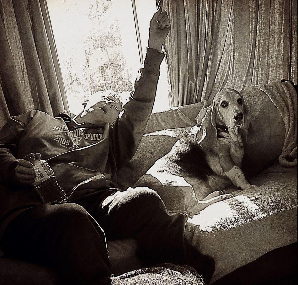 Hey Cooper there's a fly on the ceiling Unamused Sofa Dog Indoors  Relaxedand Happy Bassethoundsare Best Ilovemybassethounds Bassethoundadventures Expressions Snapwagdogs Sniffandbarkens Bassethound Moments Ilovemybassethound Pampered Pooch Iphonephotography Handsome Boy