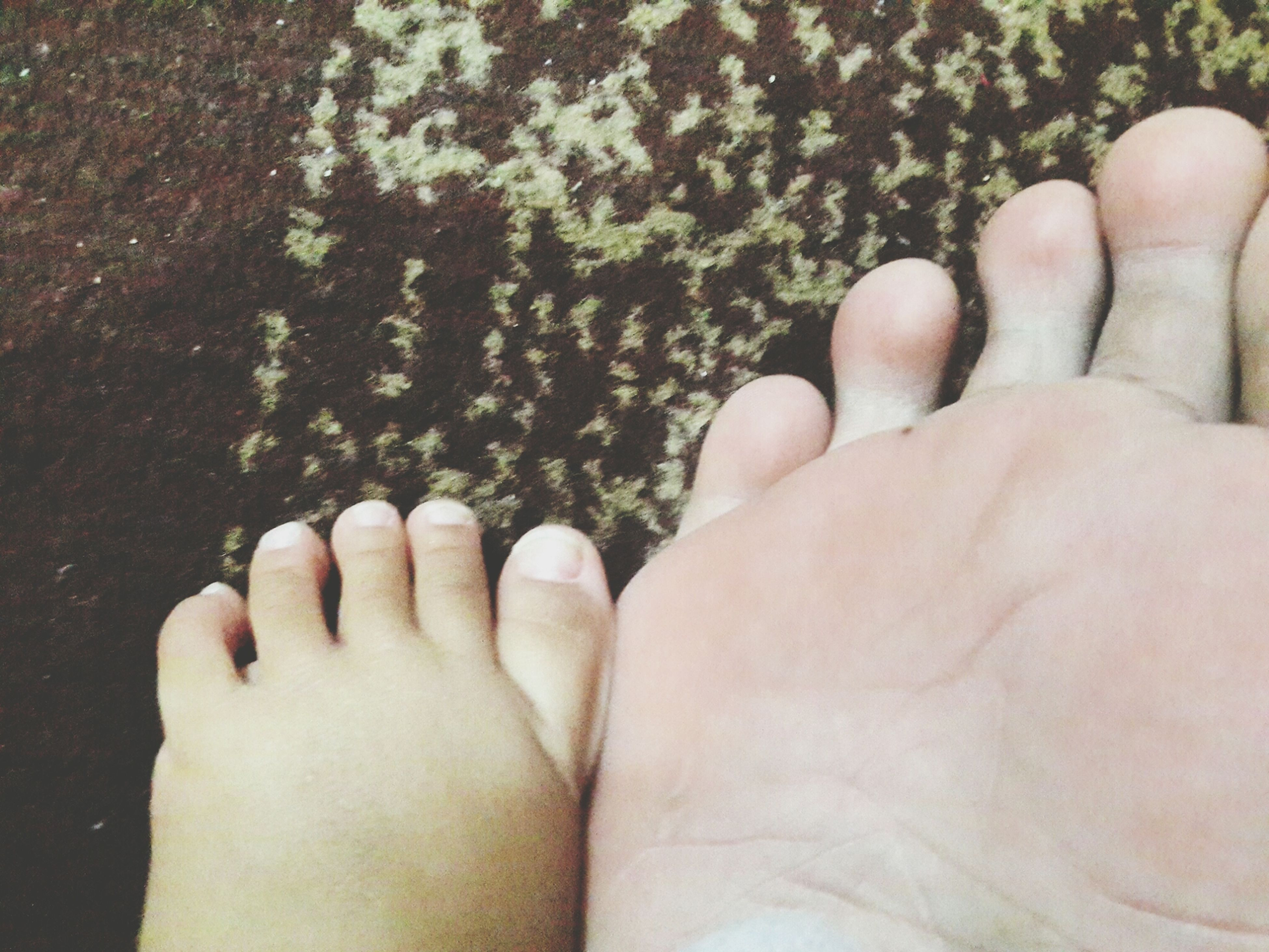 person, part of, personal perspective, human finger, cropped, close-up, holding, unrecognizable person, lifestyles, palm, detail, high angle view, human foot, human skin, leisure activity