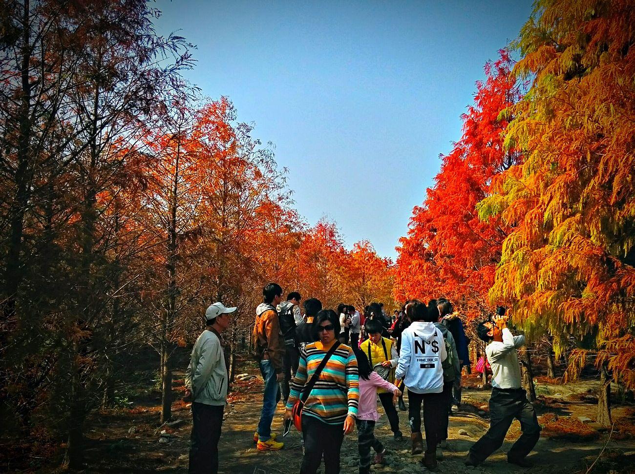 旁邊大哥拍照的姿勢好投入 @@ Nexus 5 Taichung, Taiwan Photographer Devotion