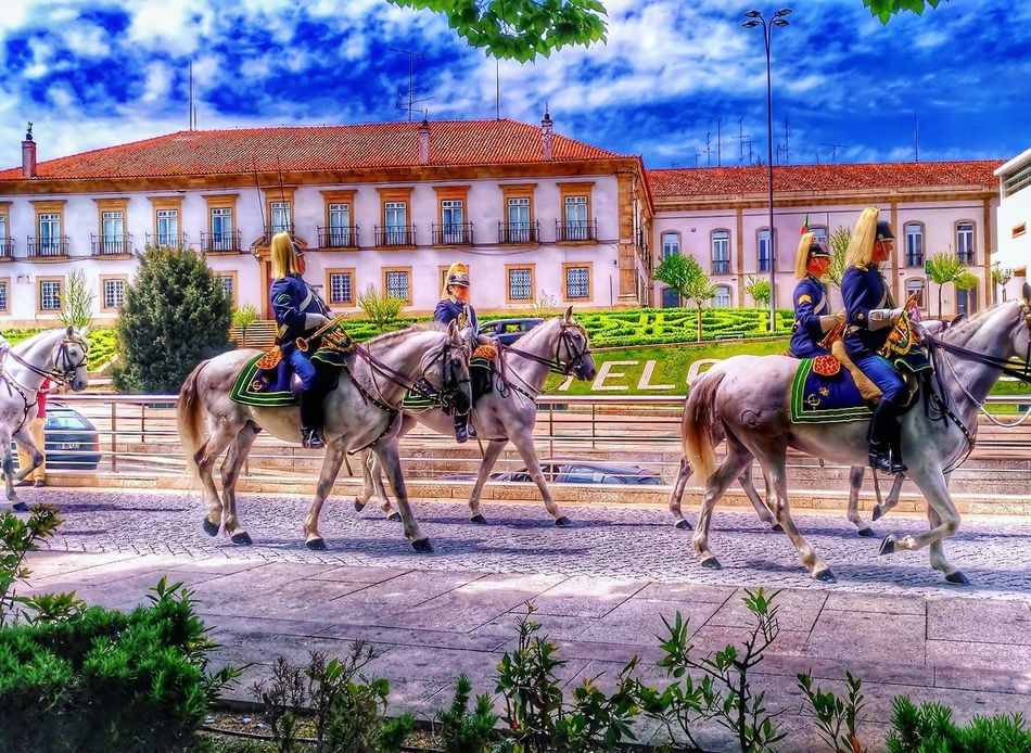 Horse Working Animal Domestic Animals Horsedrawn Animal Themes Mammal Horse Cart Cloud - Sky Sky Day Outdoors People