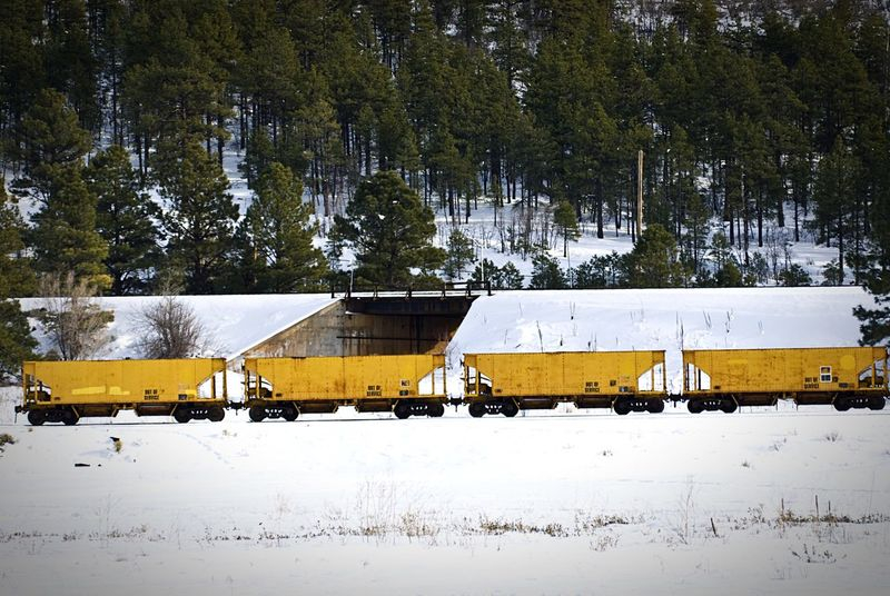 """""""Empty Yellow Freight Cars"""" Four empty freight cars sit idle on the train tracks against a snow covered tapestry in Williams, Arizona, USA. Train Train Tracks Freightcar Railroad Railroad Track Winter Snow Yellow"""