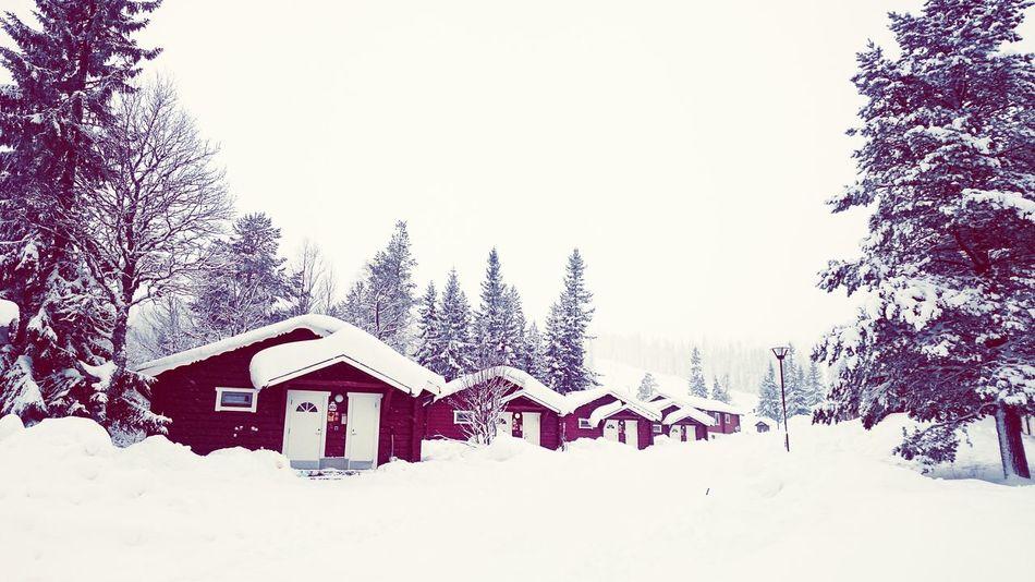 Walking Around Snow ❄ Walking Sweden Snowy Days...