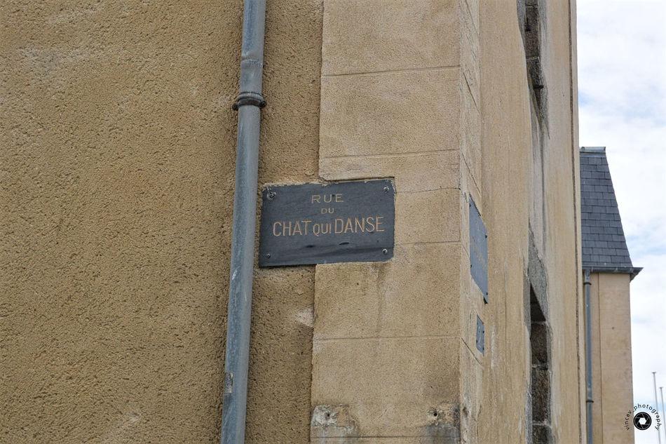 Quand les souris sont parties c'est le chat qui danse !! Architecture Close-up Murs No People Outdoors Plaque De Rue Street Plate Walls