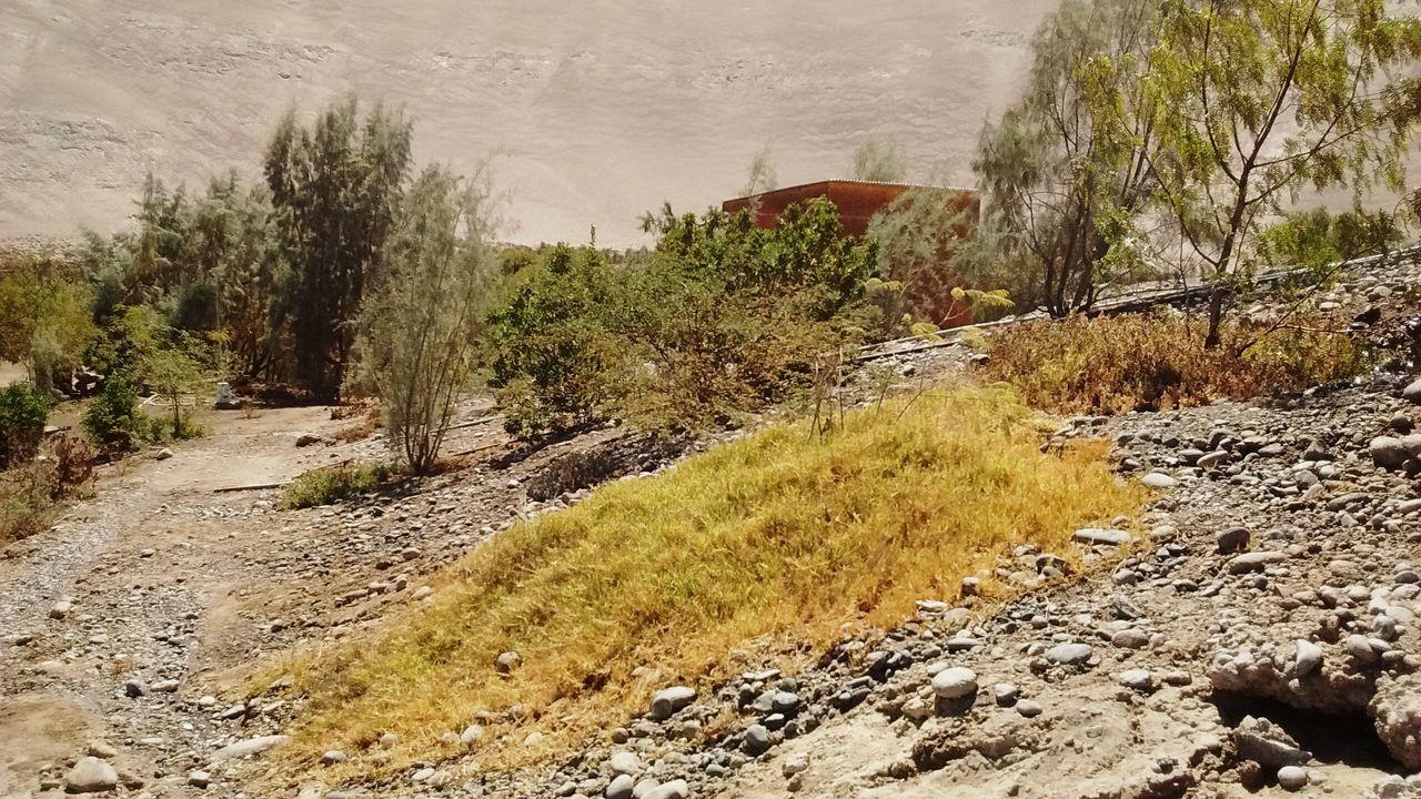 Quebrada De Tana Atacama Desert Desierto De Atacama Tana Chile