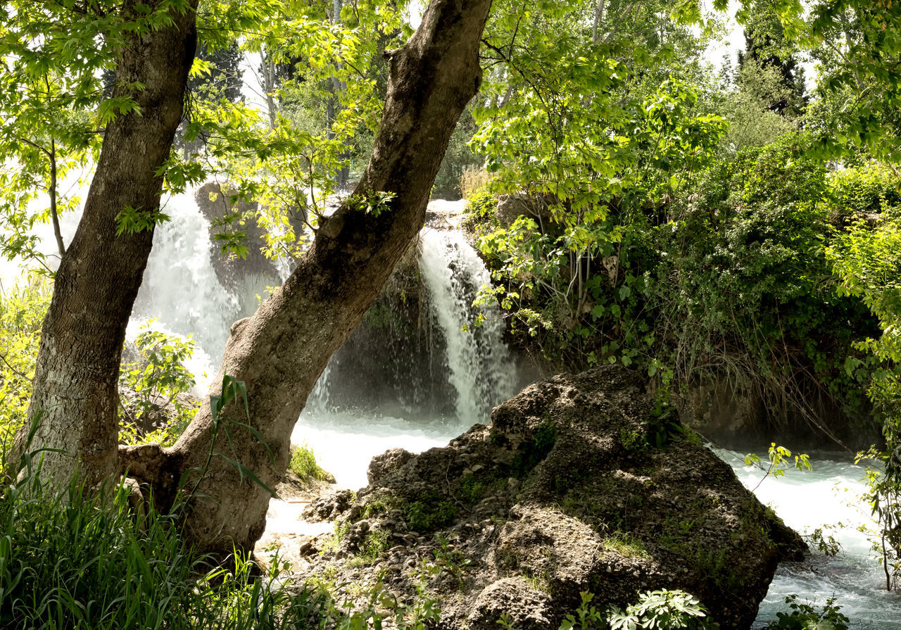 Tarsus Waterfall Beauty In Nature Boulders Branch Flowing Water Greenery Growth Gushing Water Idyllic Nature River Rushing Water Scenics Shrubs Tarsus Tarsus Şelalesi Tarsus, Turkey, Waterfall, South, Tranquil Scene Tranquility Travel Destinations Trees Turkey Water Waterfall White Water