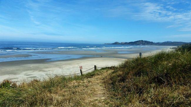 Beach Waves Headland Ocean Oregon Coast Newport Beach Agate Beach