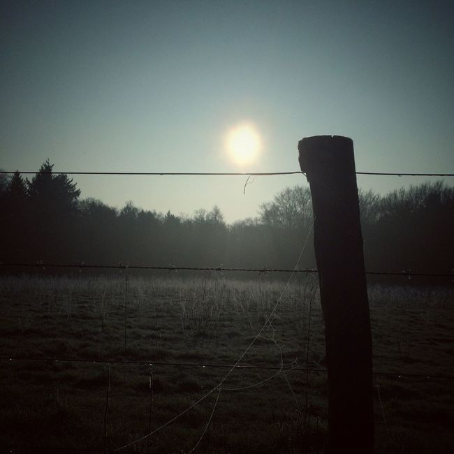 Morning Sun Nature Photography AMPt_community Freezing Cold Enjoying The View