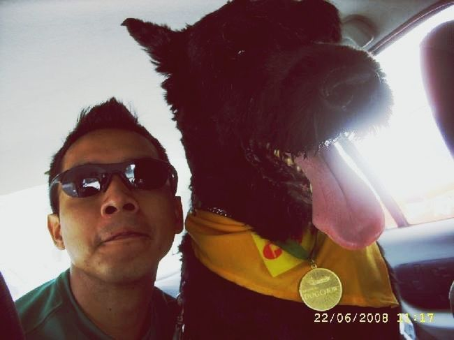 MeinAutomoment Peka Cure Misshim♥ HeWasCool Hello World Hewasadorable He Was A Champion He Was Goblin ❤